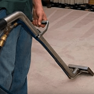 Professional Carpet Cleaning California House And Floor